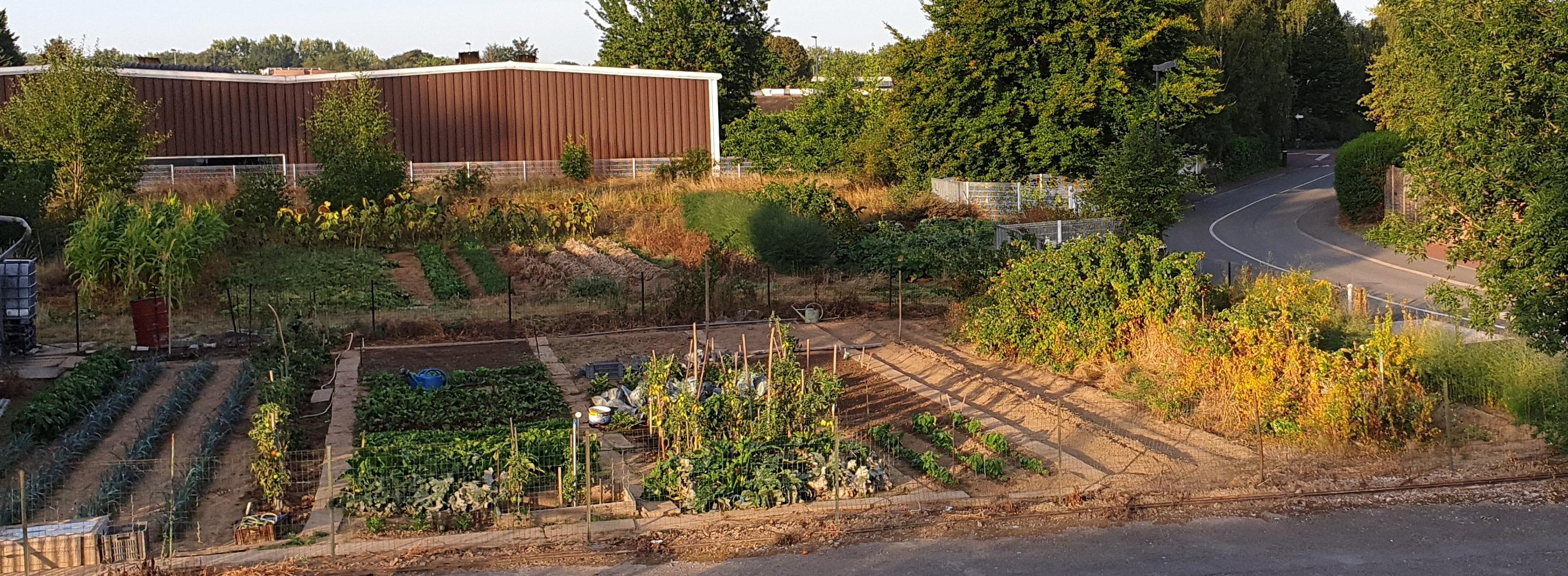 Un projet de remplacement de ce jardin nourricier par des bureaux est en cours